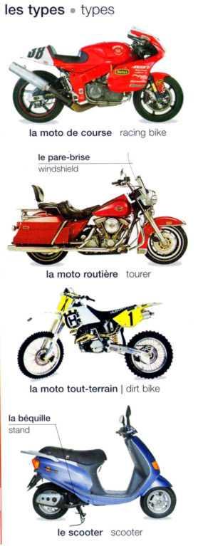 frenchbike3